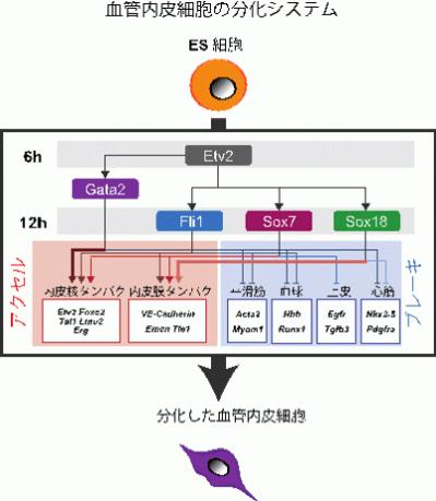 図2-3.png